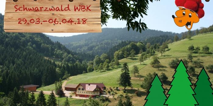 Schwarzwald Woodbage Kurs der Wölflingstufe