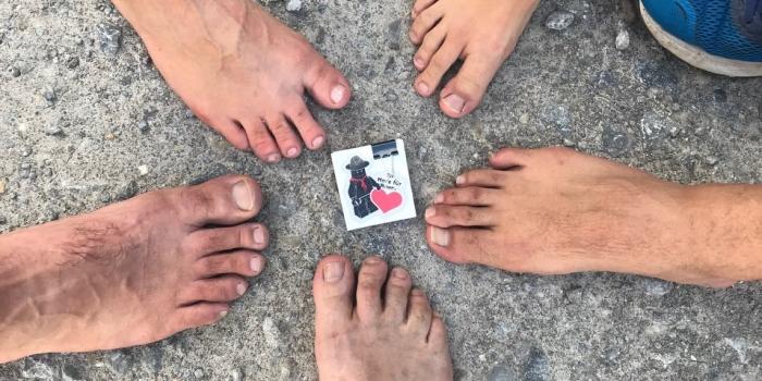 Rückblick Rosskur im Schuhkarton